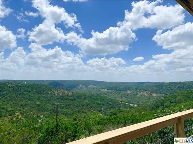 799 Olive Tree, Canyon Lake, TX 78133 (MLS #450055) :: Kopecky Group at RE/MAX Land & Homes