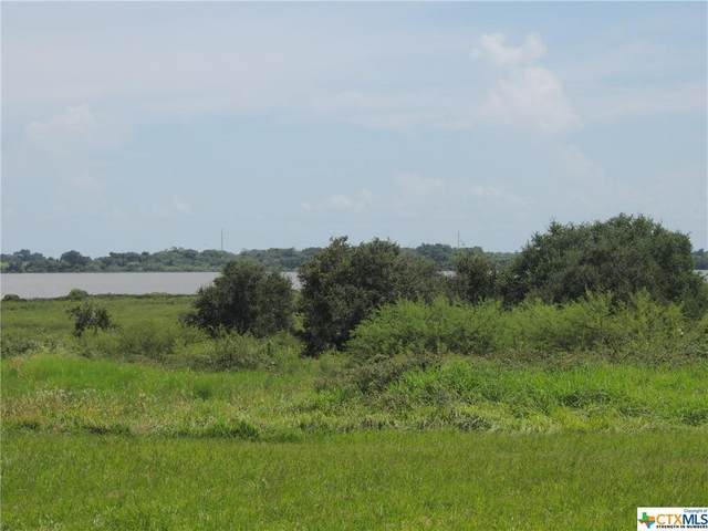 Lot #4 St Hwy 172, Port Lavaca, TX 77979 (MLS #450235) :: The Zaplac Group