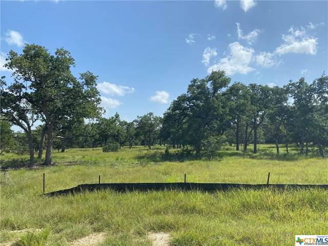 981 Jenny Leigh Trail, Bulverde, TX 78163 (MLS #450240) :: The Real Estate Home Team
