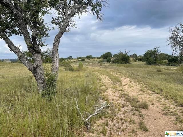 92 Axis Circle, Fredericksburg, TX 78624 (MLS #450250) :: Kopecky Group at RE/MAX Land & Homes