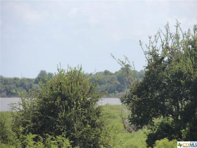 Lot #5 St Hwy 172, Port Lavaca, TX 77979 (MLS #450270) :: The Zaplac Group