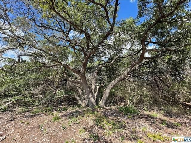12321 Eagle Nest Road, Salado, TX 76571 (#450322) :: First Texas Brokerage Company