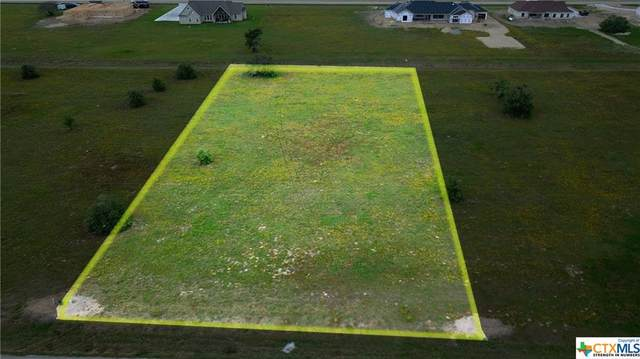 363 Sendera Loop, Victoria, TX 77904 (MLS #450346) :: Texas Real Estate Advisors