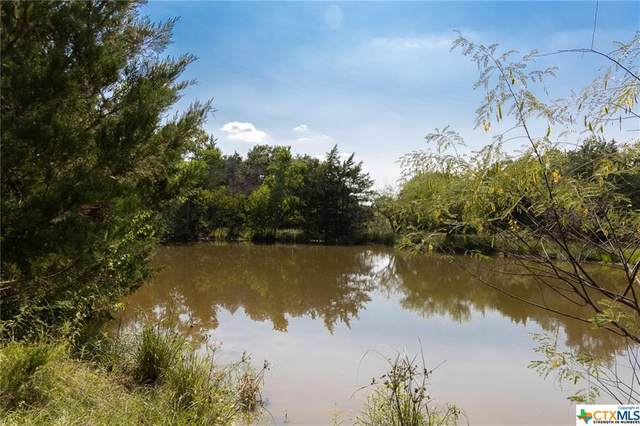 2181 County Road 126, Hallettsville, TX 77964 (#450399) :: First Texas Brokerage Company