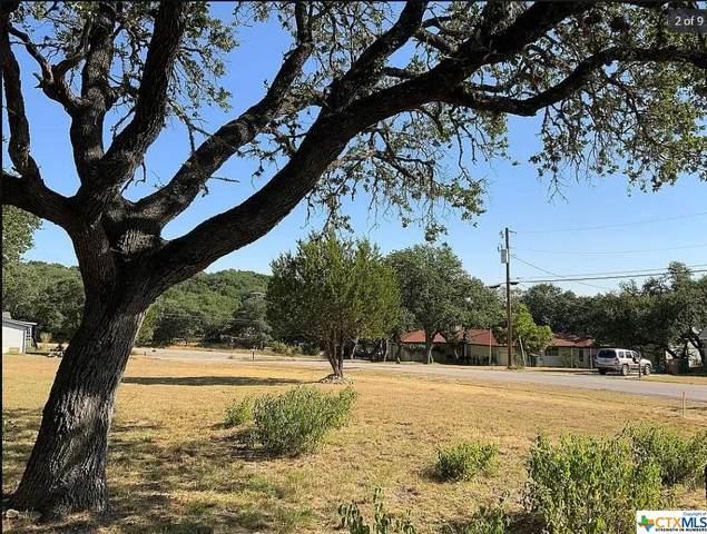 1090 Arcadia Drive, Canyon Lake, TX 78133 (MLS #450446) :: Kopecky Group at RE/MAX Land & Homes