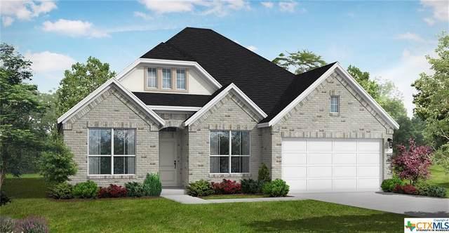 221 Lady Bug Road, San Marcos, TX 78666 (MLS #450582) :: Kopecky Group at RE/MAX Land & Homes