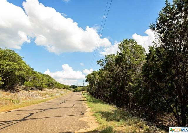 4091 Sherwood Drive, OTHER, TX 76513 (MLS #450593) :: The Zaplac Group