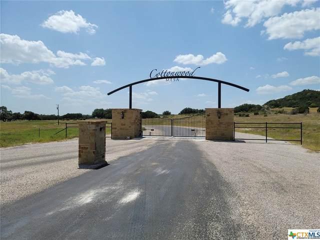 Lot 17 Cottonwood Mesa Drive, Kempner, TX 76539 (MLS #450629) :: Brautigan Realty