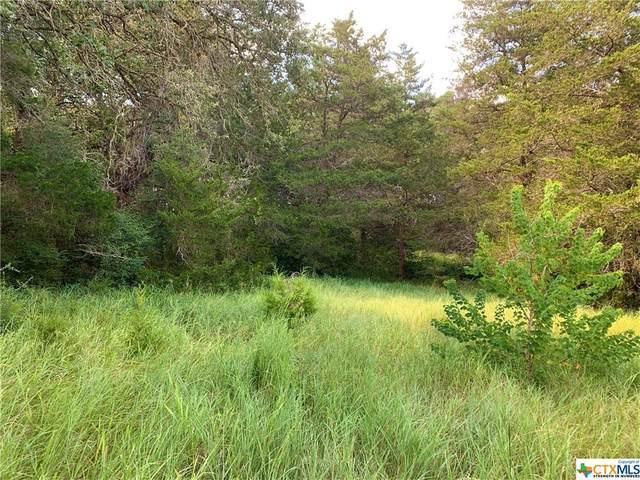 2230 Darilek Road, Flatonia, TX 78941 (MLS #450685) :: Kopecky Group at RE/MAX Land & Homes
