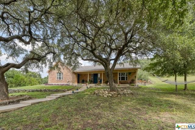 172 Lone Creek Circle, New Braunfels, TX 78132 (MLS #450696) :: The Zaplac Group