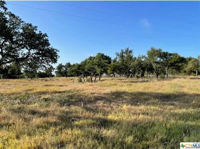 Lot 38 Cottonwood Mesa Drive, Kempner, TX 76539 (#450739) :: Sunburst Realty