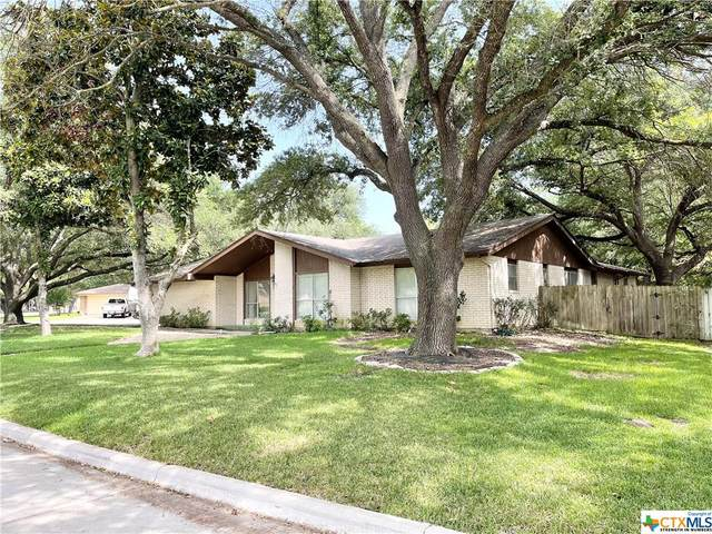 4101 Antelope Trail, Temple, TX 76504 (MLS #450799) :: Kopecky Group at RE/MAX Land & Homes