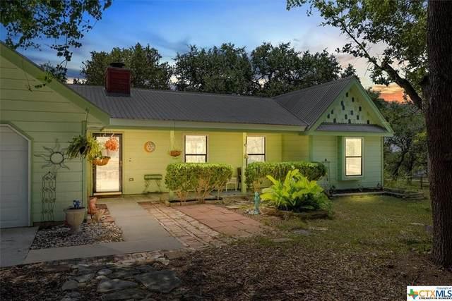 1421 Lazy Lane, San Marcos, TX 78666 (MLS #450882) :: The Zaplac Group