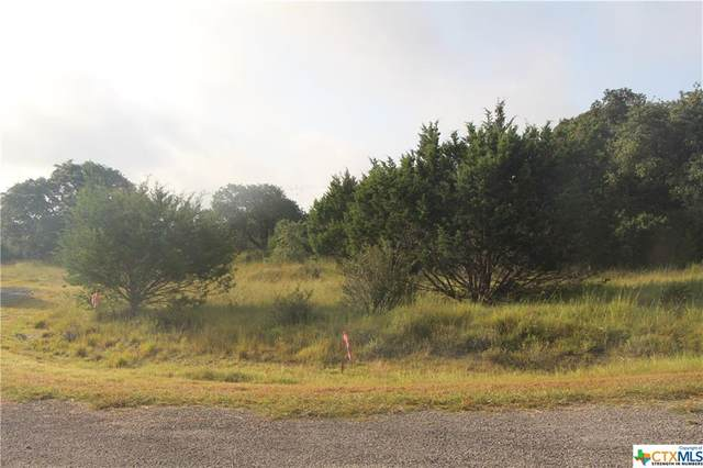 Lot 703 William Woods, OTHER, TX 78606 (MLS #450906) :: The Zaplac Group