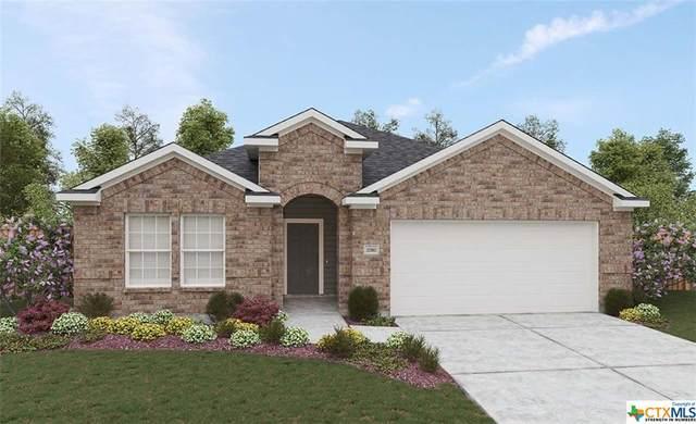 911 Swing Cloud, New Braunfels, TX 78130 (MLS #450925) :: HergGroup San Antonio Team