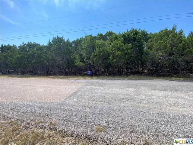16264 Charlya Drive, Temple, TX 76502 (MLS #451093) :: HergGroup San Antonio Team