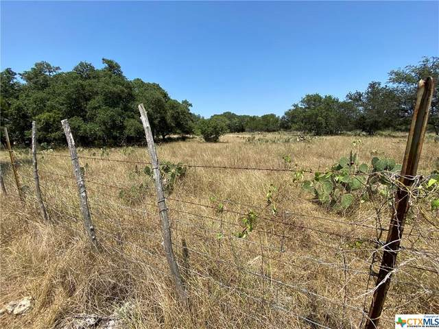 207 Oakwood Loop, San Marcos, TX 78666 (MLS #451133) :: Rebecca Williams