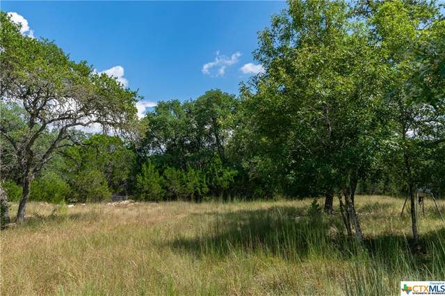 1259 Forest View Drive, Blanco, TX 78606 (MLS #451135) :: Texas Real Estate Advisors