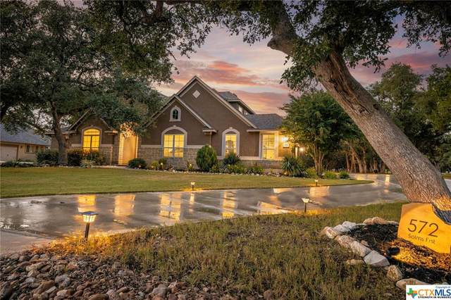 572 Solms Forest, New Braunfels, TX 78132 (MLS #451156) :: RE/MAX Family