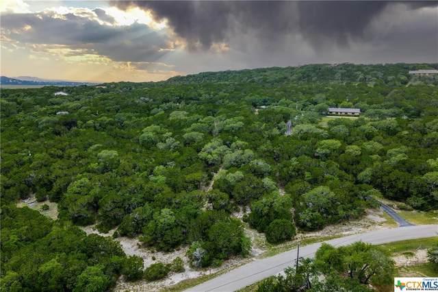 785 Spring Mountain Drive, Canyon Lake, TX 78133 (MLS #451166) :: Texas Real Estate Advisors