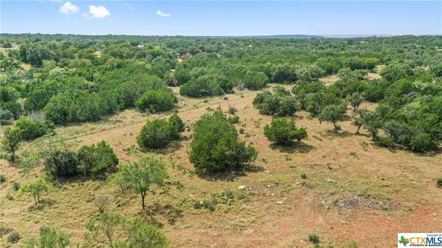 9553 Smith-West Ranch Road, Round Mountain, TX 78663 (MLS #451234) :: RE/MAX Family