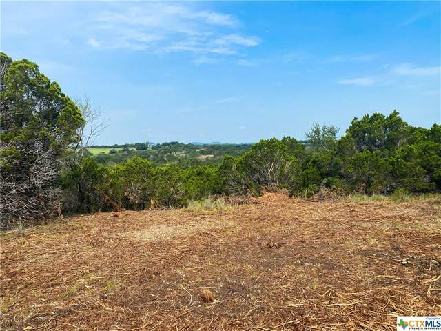 TBD-2 Beadle Road, Gatesville, TX 76528 (MLS #451292) :: The Zaplac Group