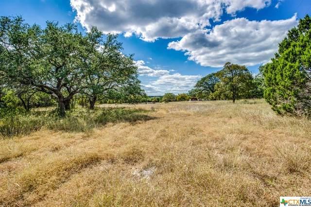 124 Turkey Trail, San Marcos, TX 78666 (MLS #451427) :: Texas Real Estate Advisors