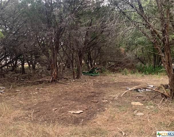 10 N Bowman Drive, OTHER, TX 76513 (MLS #451433) :: Brautigan Realty
