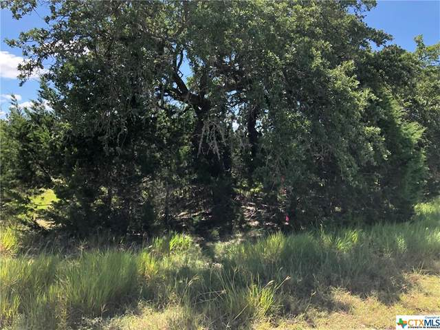 615 Lantana Ridge, Spring Branch, TX 78070 (MLS #451439) :: Texas Real Estate Advisors