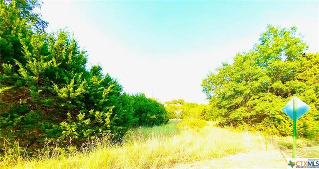 206 & 210 Rolling Hills Road, Gatesville, TX 76528 (#451441) :: First Texas Brokerage Company