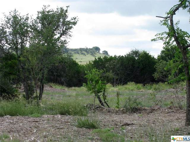 TBD Blakely Road, Gatesville, TX 76528 (#451464) :: First Texas Brokerage Company