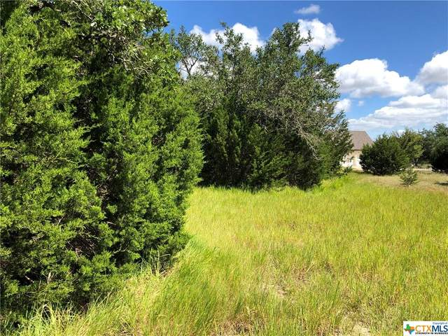 645 Lantana Ridge, Spring Branch, TX 78070 (MLS #451467) :: Texas Real Estate Advisors