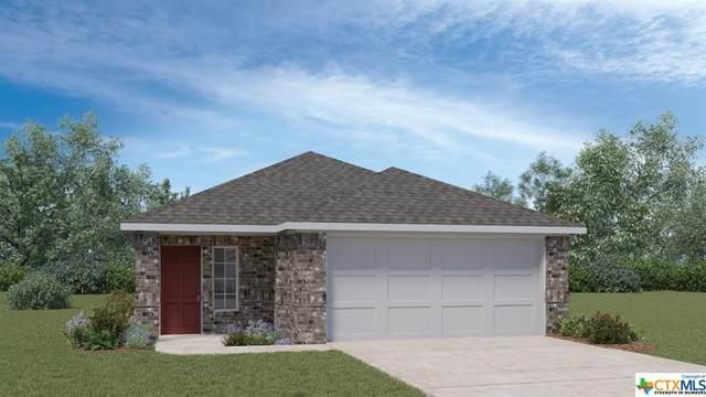904 Cinnamon Teal, Seguin, TX 78155 (MLS #451526) :: Texas Real Estate Advisors