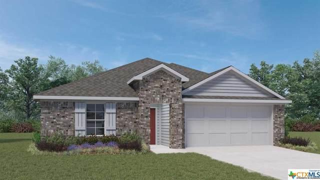 828 Cinnamon Teal, Seguin, TX 78155 (MLS #451539) :: Texas Real Estate Advisors