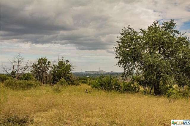 4 One River Point Drive, Johnson City, TX 78636 (MLS #451585) :: Kopecky Group at RE/MAX Land & Homes