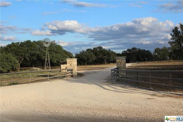 7933 Shiny Top Ranch Lane, Salado, TX 76571 (MLS #451650) :: Kopecky Group at RE/MAX Land & Homes