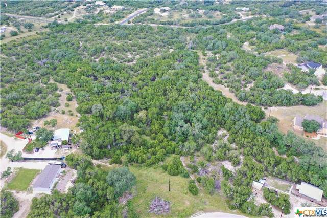 TBD E Golf Course Drive, Spring Branch, TX 78070 (MLS #451658) :: Kopecky Group at RE/MAX Land & Homes