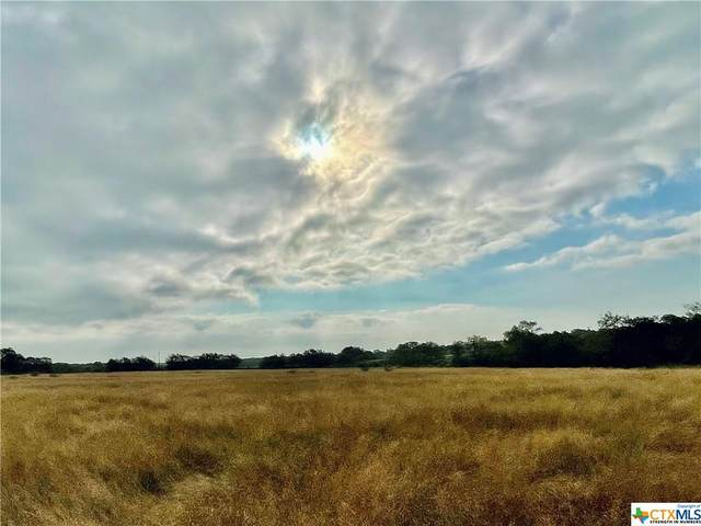 Lot 22 Cannon North Drive, Gonzales, TX 78629 (MLS #451749) :: Neal & Neal Team