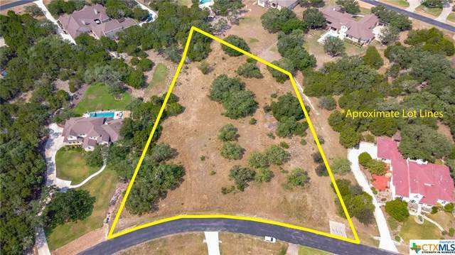 718 Haven Point Loop, New Braunfels, TX 78132 (MLS #451811) :: The Real Estate Home Team