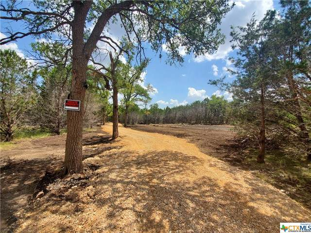 526 Stars And Stripes, Fischer, TX 78623 (MLS #451893) :: RE/MAX Family