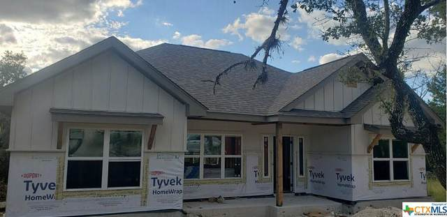 169 Twin Lake Trail, Spring Branch, TX 78070 (MLS #451907) :: Kopecky Group at RE/MAX Land & Homes