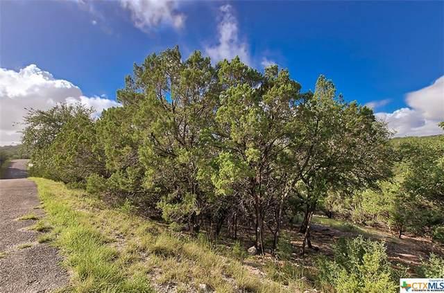 494 Herauf Dr, Canyon Lake, TX 78133 (MLS #452042) :: Neal & Neal Team