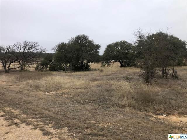111 Sable Pass, Lampasas, TX 76550 (MLS #452075) :: Texas Real Estate Advisors