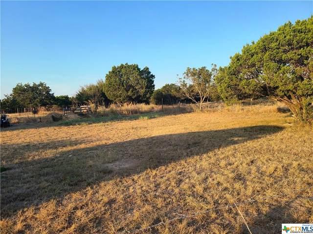TBD County Road 3355, Kempner, TX 76539 (MLS #452133) :: Rebecca Williams
