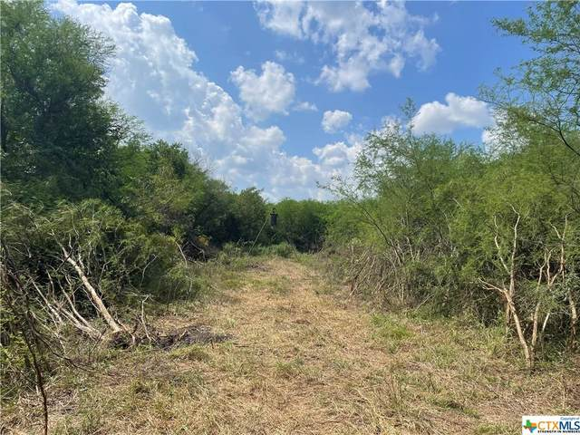 00 Old Bloomington Road, Victoria, TX 77905 (MLS #452144) :: Texas Real Estate Advisors