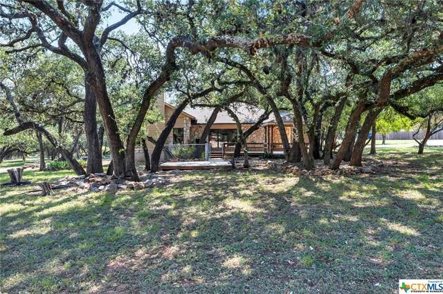 223 Pampas Pass, San Marcos, TX 78666 (MLS #452152) :: Rutherford Realty Group