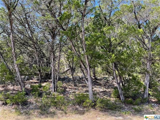 385 Canyon Creek, Canyon Lake, TX 78133 (MLS #452234) :: HergGroup San Antonio Team