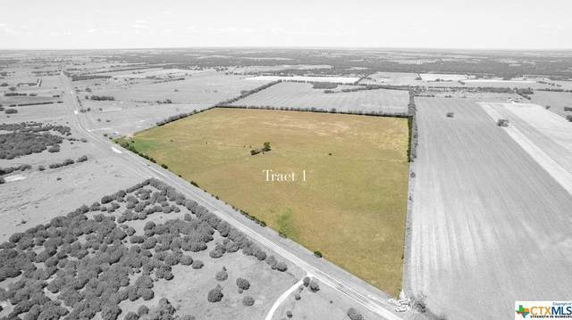 TBD Fm 217, Valley Mills, TX 76689 (MLS #452403) :: Vista Real Estate