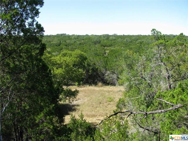 725 County Road 159, Evant, TX 76525 (MLS #452455) :: The Real Estate Home Team