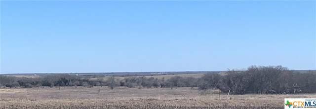 15031 Armstrong Loop, Salado, TX 76571 (MLS #452594) :: Brautigan Realty